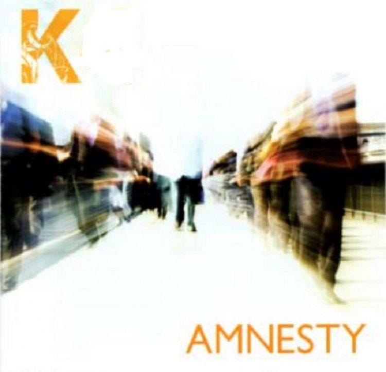 Amnesty Album Cover